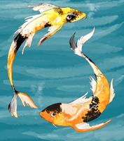 Koi Carp by Tigersrock144