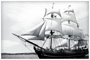 Tall Ship Bounty EDIT by Mckronic
