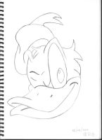 Donald Duck Winking by SlidingWingz