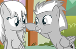 Grey Siblings by The-SiLvER-Brony