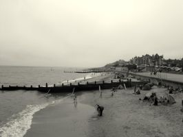 Greyscale Beach. by HaanaArt