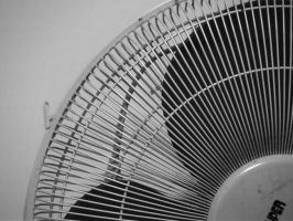 Big Fan by Valerie-heika