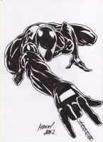 Black Spiderman Sketch by mannyclark