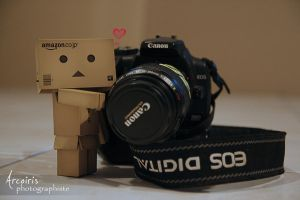 Danbo and his new friend by arcoirisphoto