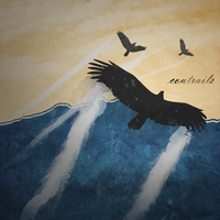 Birds With Contrails by Survulus