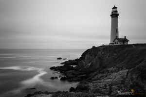 Pigeon Point Lighthouse by tassanee