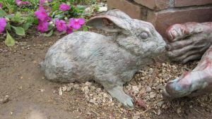 Statue Stock Rabbit by chamberstock