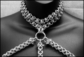 Open Maille Club Top Close Up by FeMailleTurtle