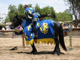 More Knight Joust Stock 013 by tursiart