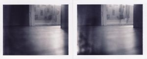 ghost diptych by naisukai