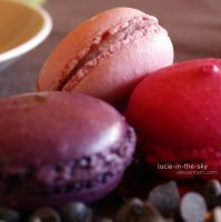 macarons IV by lucie-in-the-sKy