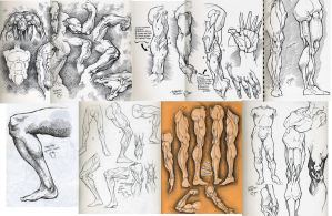 anatomy studies grouped by nickybeats