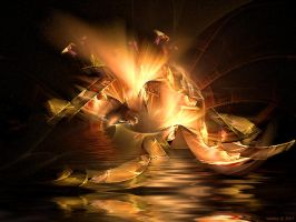 Fire by SARETTA1