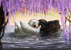 Swans. by jen-and-kris