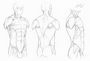 Random anatomy sketches 7 by RV1994