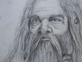 Gimli by Xedotic