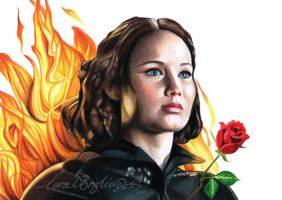 Katniss from Hunger Games by Correlation