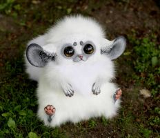 Inari Foxes: Snowball by Santani