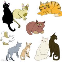 Cats cats cats by Vez
