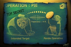 Operation: PIE by Drawer888