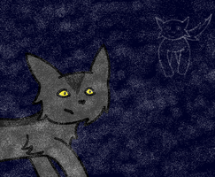 Graystripe-disapeared. by skyspirit101