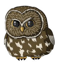Owl by NarutoLover6219