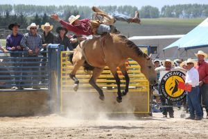 Taupo Rodeo 157 by Sooty-Bunnie