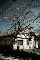 sky over house and tree by narcissus-
