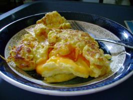 Egg and cheese Omlet by aragornsparrow