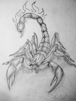 Scorpion 11.05.2005 by NikaLim