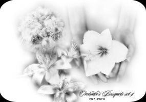Orchidee's bouquet set 04 by orchidee