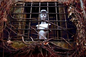 Cage by claustrofobia