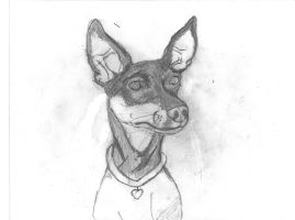 dog by theGman0