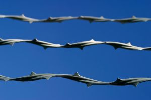 Barb wire by theGuffa