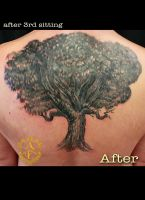 Tree of Life Cover Up Tattoo done by Sean Ambrose by seanspoison