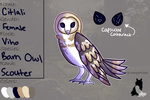 Citlali | The Owls of the North | Scouter by Ghoulistic