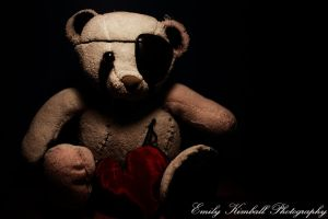 Teddy I by Wireless-bird