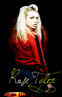 Doctor Who Series 1 Rose Tyler by feel-inspired