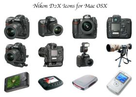 Nikon D2X Icon Container by noelholland