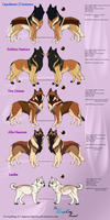 Kennel dogs_Simple sheet 4 by Aquene-lupetta
