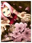 Old Version: Sakura Season by chirumu