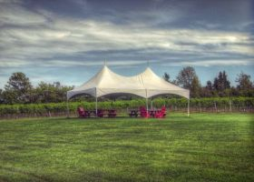 Vineyard Tent by ShawnaMac