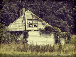 Reclaimed By Nature by jim88bro