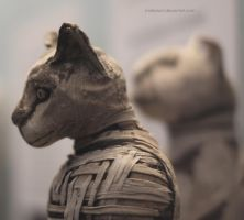 The Pharao's Cats by maikarant