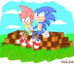 Sonic and Amy: a little gift by Pu3ppchen