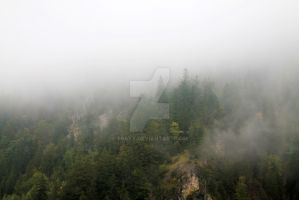 Misty Mountains by traxy