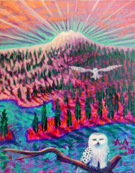 Snowy Owls by A1WEND1L
