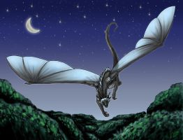 Nighttime Flight by Kata