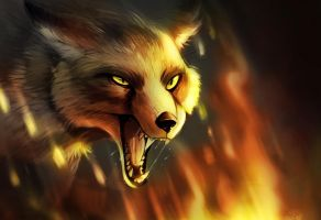 Fire Fox by UnnamedPro