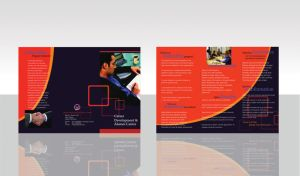 CDAC Brochure by kn33cow